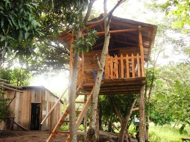Ecological farm la Reforma en Nicaragua